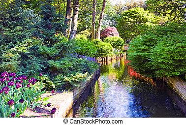 kleurrijke, holland, bloeien, park, tulpen, keukenhof