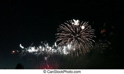 kleurrijke, vuurwerk, viering