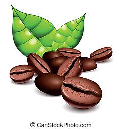 koffie bonen, bladeren