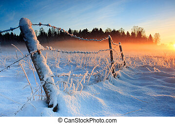 koude, warme, ondergaande zon , winter