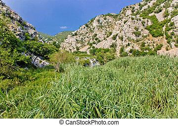 krupa, cañon, rivier, groene, natuur