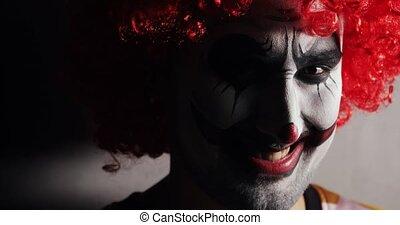 kwaad, het kijken, glimlachen, fototoestel, gezicht, afschuw, schrikaanjagend, clown, halloween.