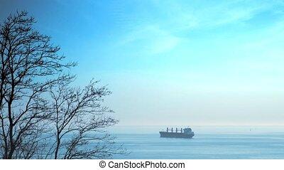 lading, ver weg, verhuizing, sea., scheeps