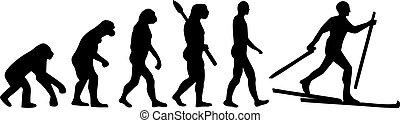 land, evolutie, ski, kruis