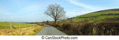 land, uk., panorama, wales, smalle , garth, straat