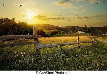 landelijk, landschap., gras, kunst, akker