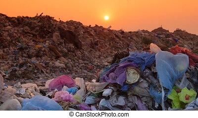 landfill, dolly:, huiselijk, restafval