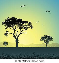 landscape, bomen