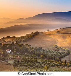 landscape, italië, op, morgen, mist, tuscany