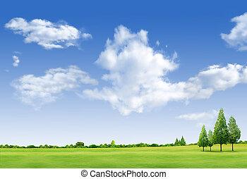 landscape, mooi, akker, forrest, hemelblauw, groen boom, gras
