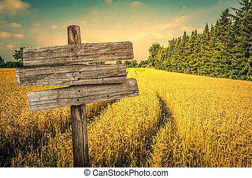 landschap, gouden, oogst, akker