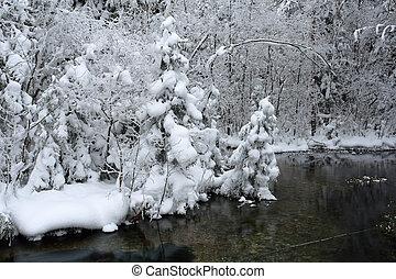 landschap, ijzig, dag, winter