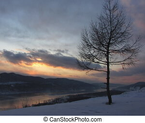 landschap., winter