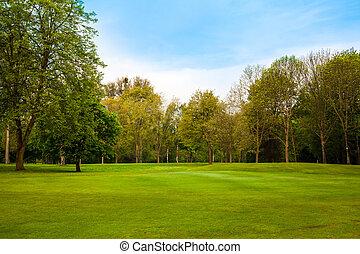 landschap., zomer, bomen, groen veld, mooi