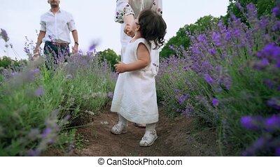 lavendel, meisje, gezin, baby, akker, vrolijke , wandelende