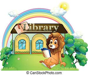 leeuw, buiten, bibliotheek