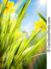 lente, achtergrond, abstract