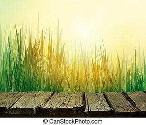 lente, achtergrond, gras