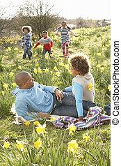 lente, daffodils, relaxen, gezin, akker