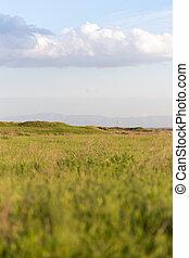 lente, kazachstan, steppes