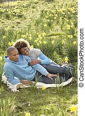 lente, paar, daffodils, relaxen, akker