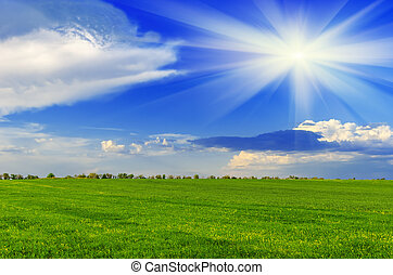 lente, zonnige dag