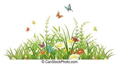 lentebloemen, gras, groene