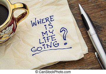 leven, mijn, waar, gaan