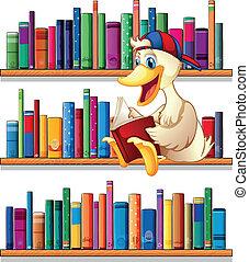 lezende , bibliotheek, eend