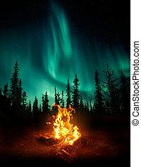 lichten, noordelijk, wildernis, kampvuur