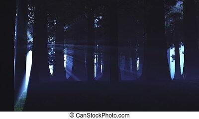 lightrays, bovennatuurlijk, bos, 3