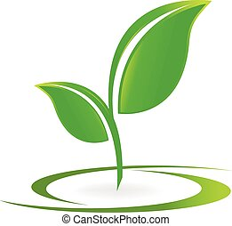logo, vector, gezondheid, vellen, natuur