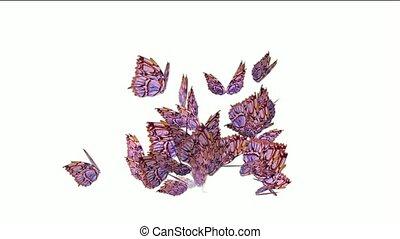 lus, vliegen, seamless, vlinder