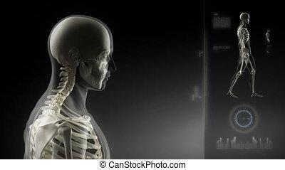 man, hoofd, wandelende, scanderen