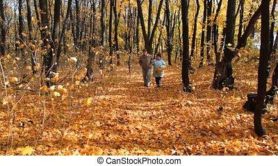 mand, paar, park, senior, wandelingen