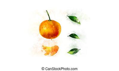 mandarijn, animatie, tekening