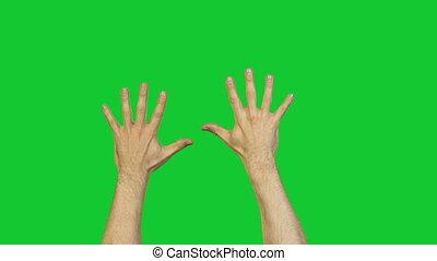 mannelijke , groen pulkt, achtergrond, handen