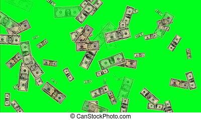 manu, ons dollar, bankpapier, scherm, groene
