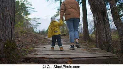 meer, 2, jaar, houten, straat, toddler, hout, forest., weinig; niet zo(veel), wandelende, moeder, sunset., hand, oud, rivier, wandelingen, brug, gaan, park, jongen, zijn