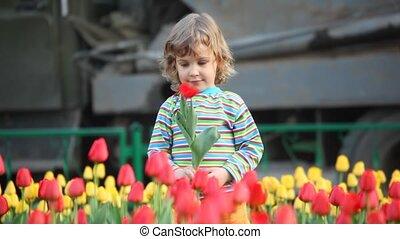 meisje, bloem, toneelstukken