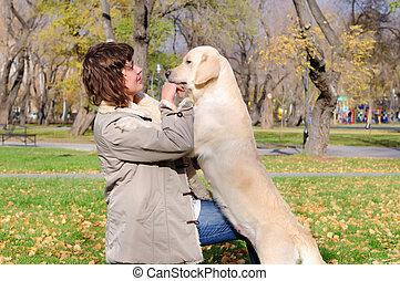 meisje, dog, spelend, jonge