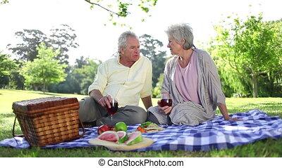 mensen, hebben, gepensioneerd, samen, picknick