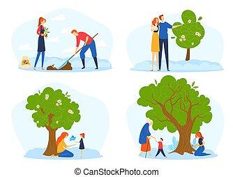 mensen, stadia, jonge, levenscyclus, groei, gandparents, metafoor, boom., groot, paar, zaad, groeiende, groeien, gezin, plant, boompje