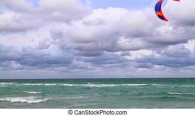 miami, winderig, strand, vlieger, dagen