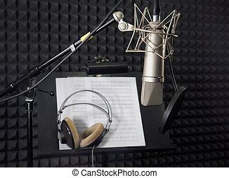 microfoon, vocaal, condensator, kamer, opname