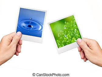 milieu, plant, natuur, concept, water, foto's, holdingshanden