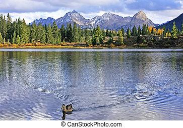 molas, wildernis, colorado, naald, meer, weminuche, bergen