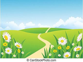 mooi, achtergrond, natuur