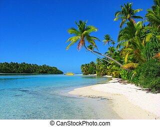 mooi, eiland, aitutaki, een voet, koken eilanden, strand