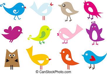 mooi en gracieus, vogels
